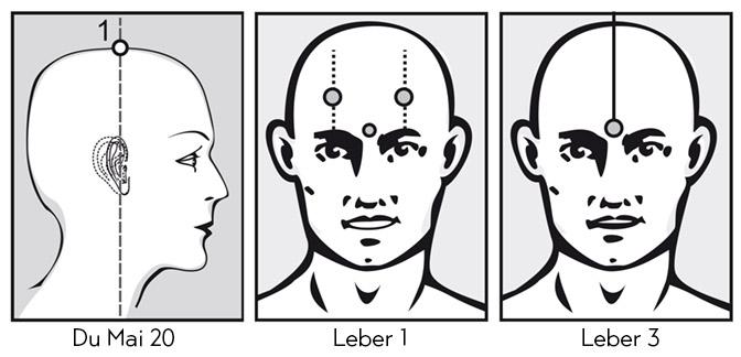 Lösen des Leber-Chi-Staus